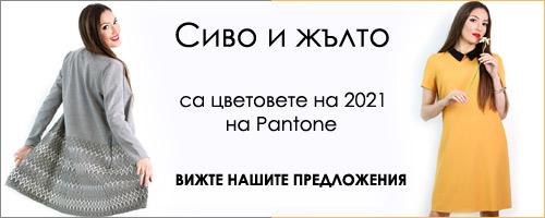 Цвят на 2021
