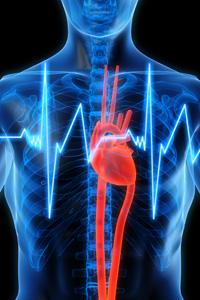 Ежедневната употреба на рибна киселина предпазва от сърдечни болести