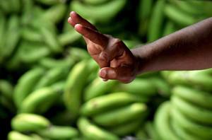 Банани, деца, секс и рокендрол за здравето на жените