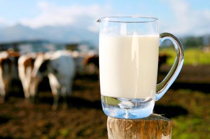 Млякото - помощник в диетите
