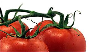 Отслабвайте лесно... с домати!
