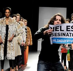 Защитници на правата на животните прекъсват шоу на Хесус Лоренцо