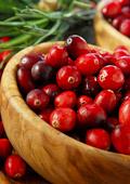 Червените боровинки - природен еликсир за здраве и дълголетие
