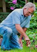 Градинарство за дълголетие