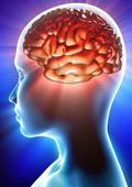 Има ли връзка между нивата на кръвната захар и паметта на човек?