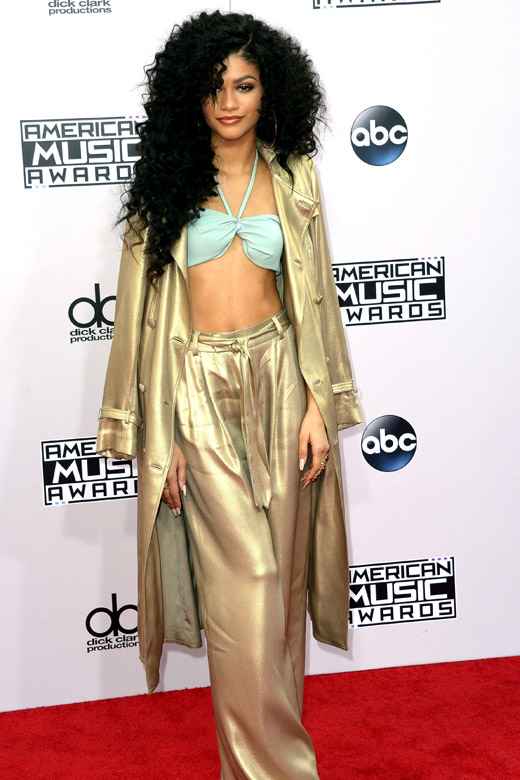 American Music Awards 2014: Celebrities' style