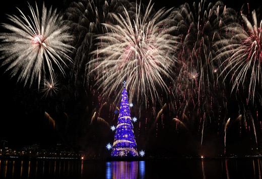 Коледа по света: Елхи с рекорд на Гинес