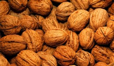 Шепа орехи предпазват мозъка