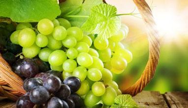 Научете повече за гроздето