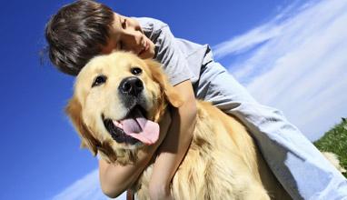 Съветите на ветеринаря за по-добра грижа за домашните любимци