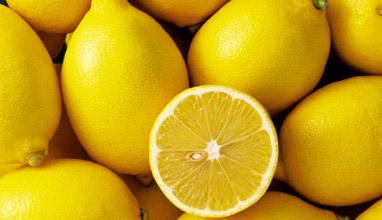 35 топ храни за подсилване на имунната система през зимата