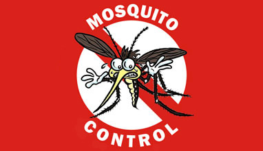 Как да се оттървем от досадните комари