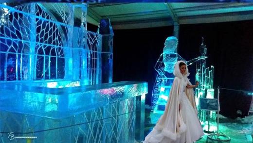 Ледените скулптури в Русе - нестандартно място за сватбена фотосесия