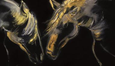 Мая Цанкова рисува Тъмна светлина