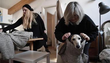 И кучетата се обличат с висша мода