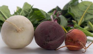 Супер храните за здраво тяло през есента