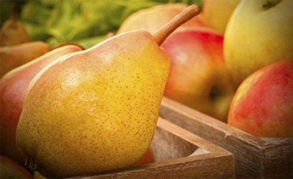 Алергени: круши и ябълки