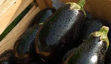 3 полезни храни за здрав черен дроб