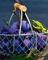 Сини сливи за силен имунитет и отслабване