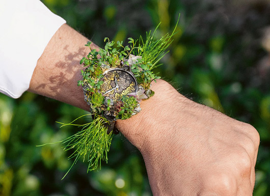 Устойчиви часовници