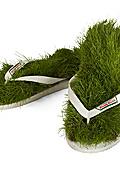 Да миришеш на окосена трева
