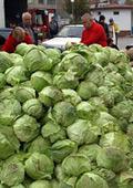 Зеле и броколи всеки ден за здраве