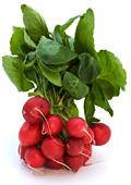 Репичките - зеленчук с детоксикиращ ефект