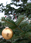 Символите на Коледа